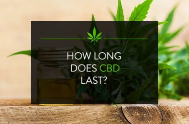 How long does CBD Last