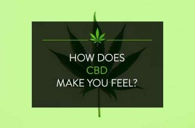 How does CBD make you feel