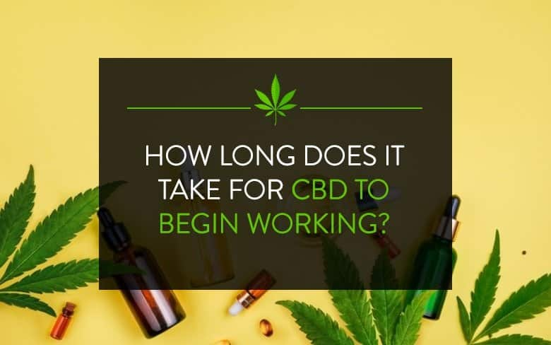 How long does it take for CBD to begin working?