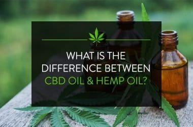 Hemp Oil Vs CBD Oil: Differences You Should Know