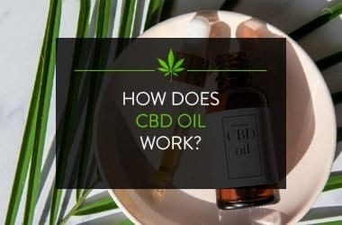 How does CBD oil work?