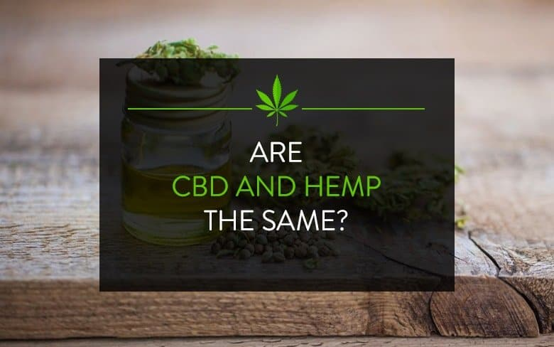 HEMP VS CBD: IMPORTANT DIFFERENCES TO KNOW