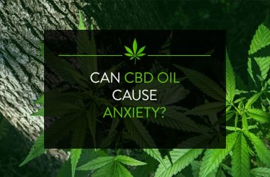 Can CBD Oil Cause Anxiety