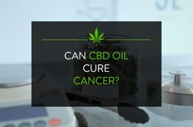 Taking CBD Oil for Cancer: Does it Work?