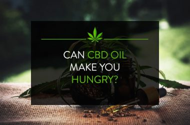 Can CBD oil make you hungry?