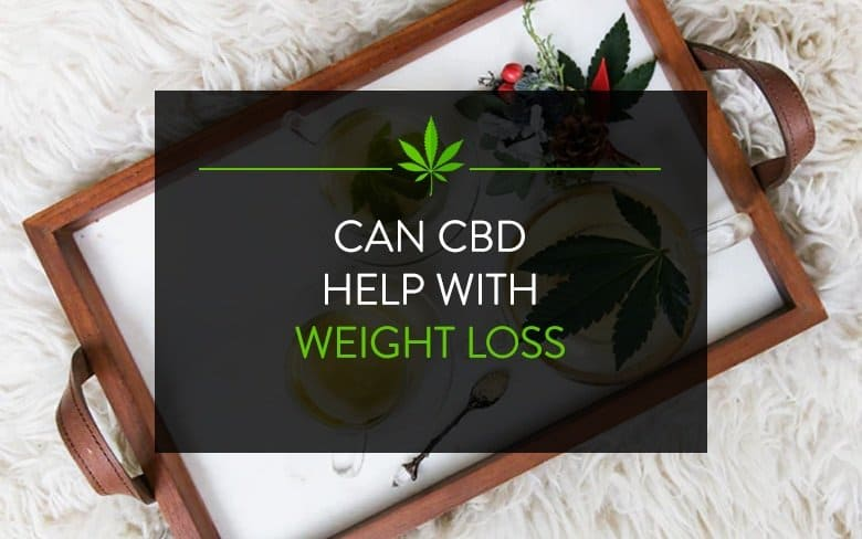 CBD for Weight Loss: Best Products to Try