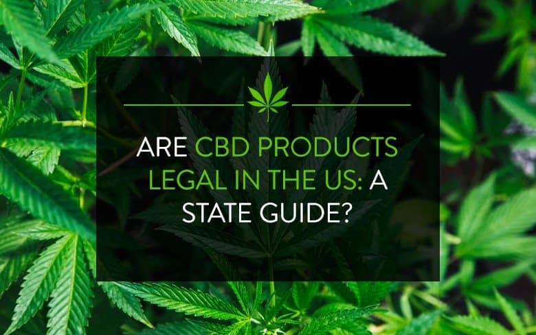 Are CBD products legal in the US: A State Guide?