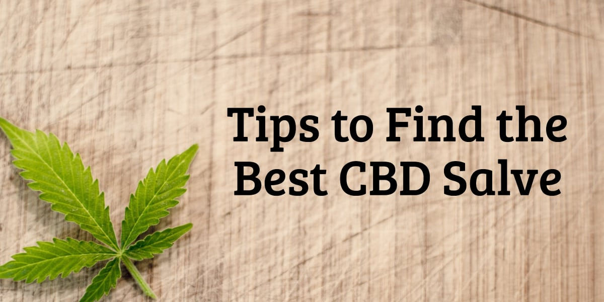 Tips to Find the Best CBD Salve