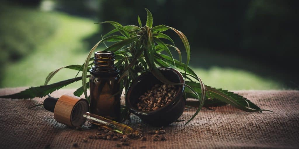 CBD Seeds and CBD Oil are used in CBD Beauty Skincare Products