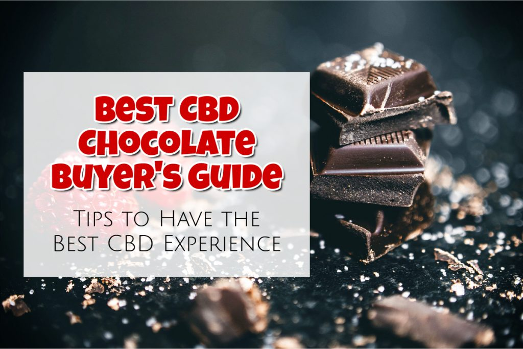Best CBD Chocolate Buyer's Guide: Tips to Have the Best CBD Experience