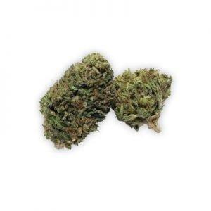 Americana CBD Flower Buds (1g) Suzy-Q