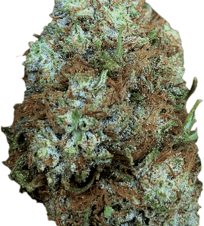 Dr. Strains Crawford CBG Flower