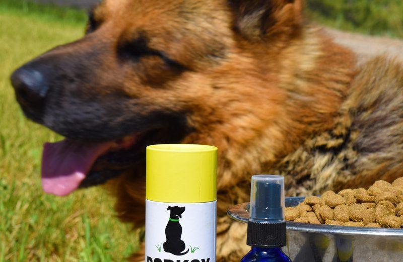 Barksy CBD Pet Spray Review: Joint Health CBD Pet Spray With Turmeric Review